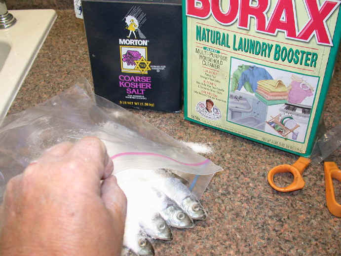 how to make your own fishing bait