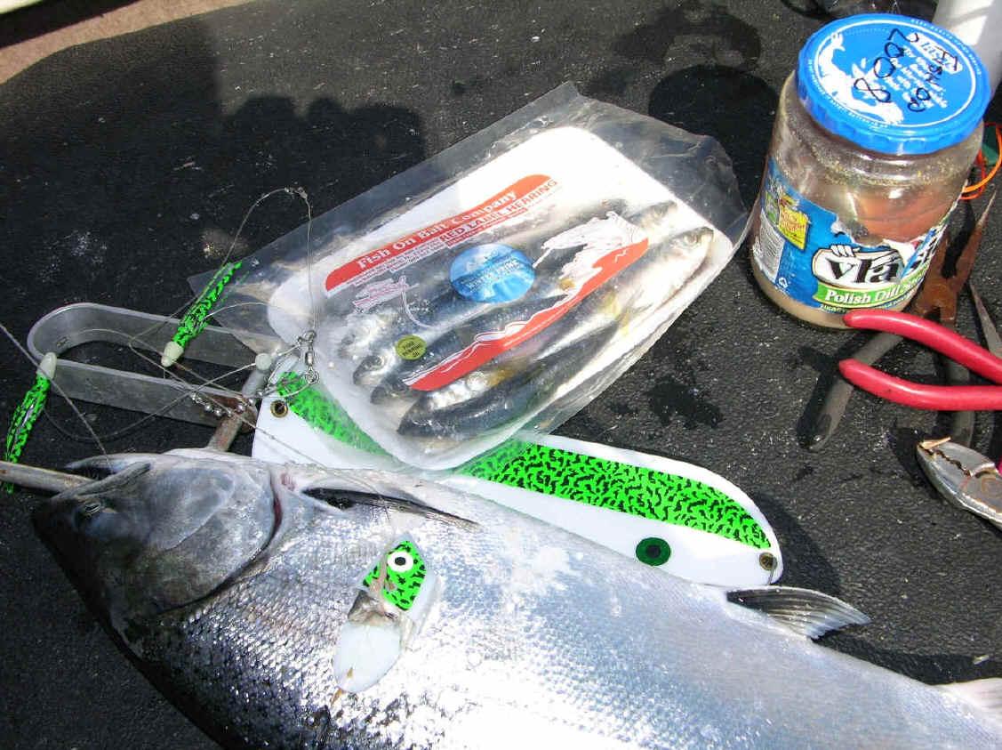 how to brine fish bait