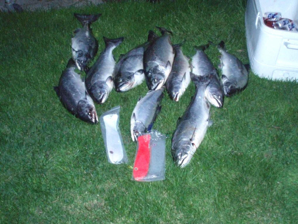 Captains log for april may june 2009 for Michigan fish limits