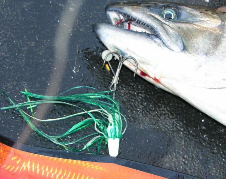 12 Salmon Trolling Flies